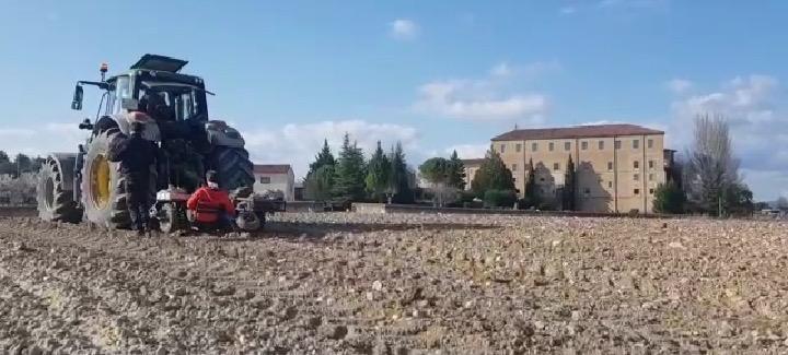 Plantación de una finca situada frente al Monasterio del Espino